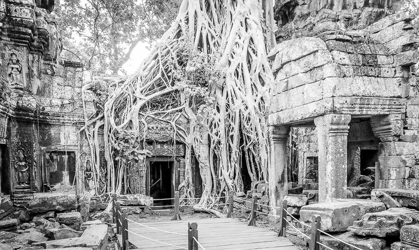 A life in ruins: Angkor Wat temple