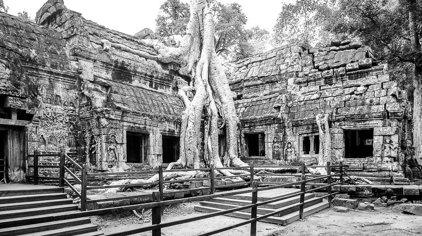 A life in ruins: Angkor Wat