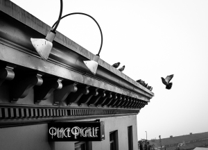 Place Pigalle and Pigeons