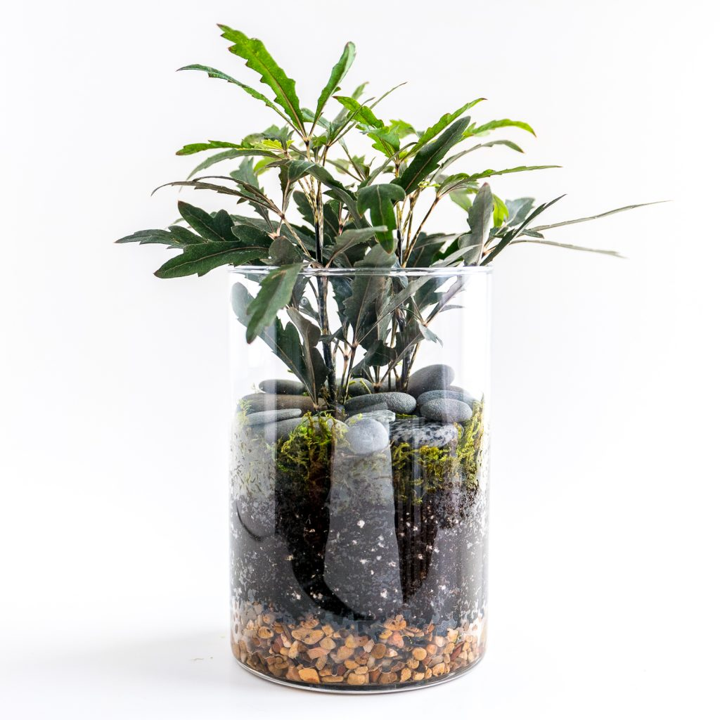 Travel and terrariums - another faux terrarium